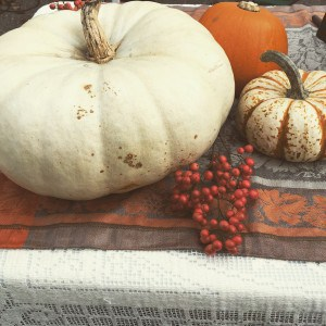 A variety of pumpkins and red berries for fall decorations