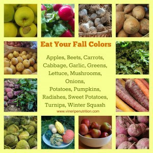 A seasonal veggie and fruit poster for fall foods