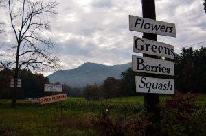 Flying Cloud Farm Sign