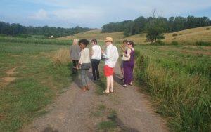 Enjoying a summer farm tour