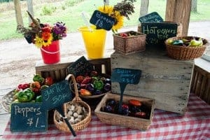 A beautiful display of produce and flowers at Flying Cloud farm stand.