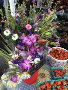 Spring Berrys & Blooms