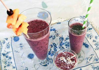Wild Blueberry Tropical Smoothie