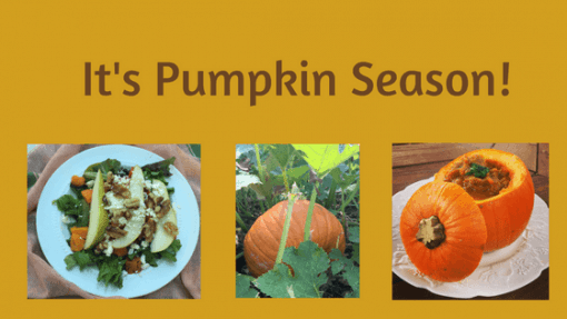 2 Savory Pumpkin Seasons