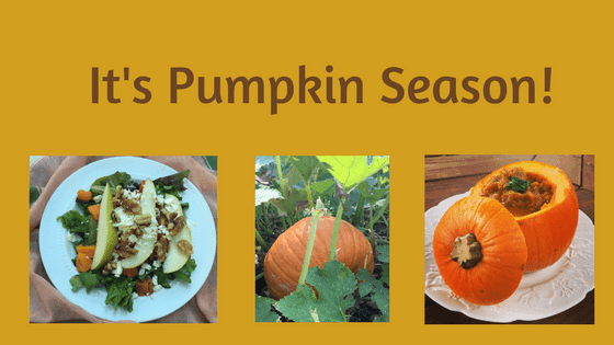 2 Savory Fall Pumpkin Recipes