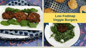 Grilled Vegetarian Burger Low Fodmap