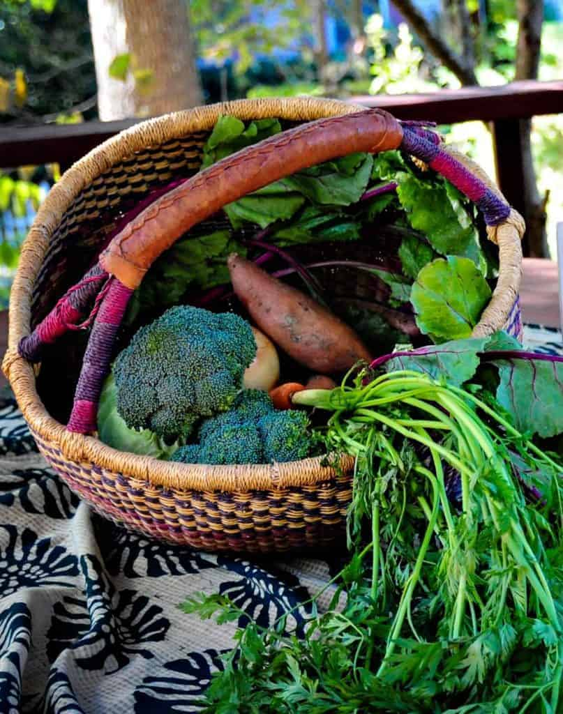 Picture of Basket of Vegetables