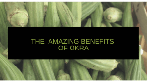 picture of okra